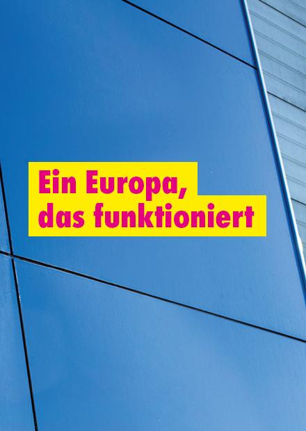 Programm zur Europawahl